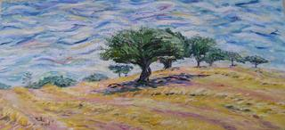 Trees in Harvested Wheat Field by Moti Lorber