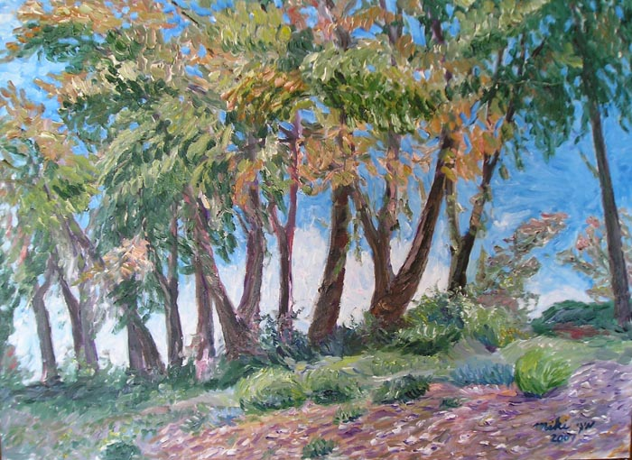 Trees on the Hill by Moti Lorber