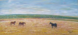 Free Horses on Harvested Wheat Field by Moti Lorber