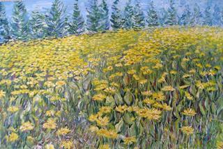 Groundsel Field by Moti Lorber
