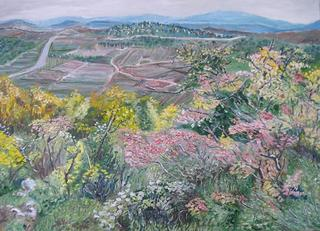 Panoramic view Trough a Bush by Moti Lorber