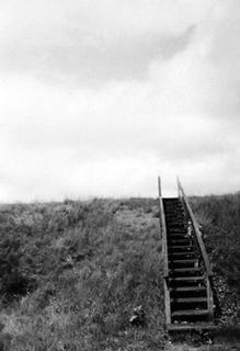 Steps by Jack Dzamba
