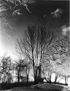 Ice Pond by Jack Dzamba