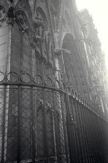 Notre Dame by Jack Dzamba
