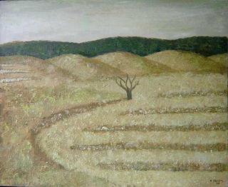 Monegros by Conxa Ibáñez