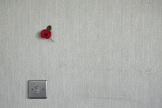 Poppy Wall by Peter Muller