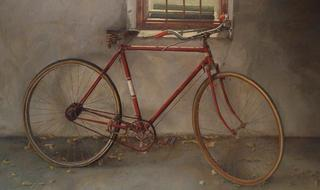 The Eloy´s Bicycle by Pablo Carnero