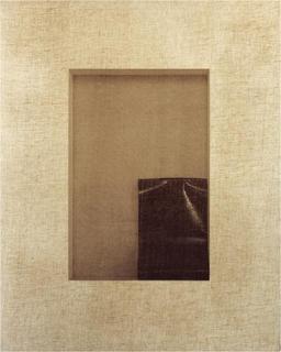 Paradisos Perduts (X) by Joan Ill