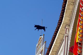The Bull I by Anya Bartels-Suermondt