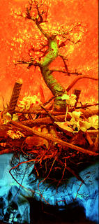 Apocalipse by Xabier Bande