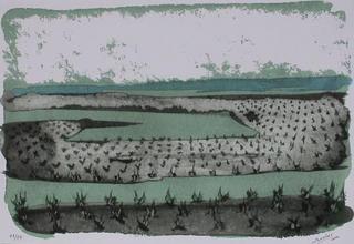 Green Vineyard by José Beulas