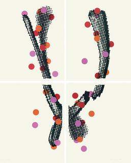 Collage de gomettes (4 prins) by François Duconseille