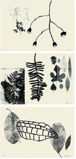 De l'herbier (portfolio of 3 prints) by Shelagh Keeley
