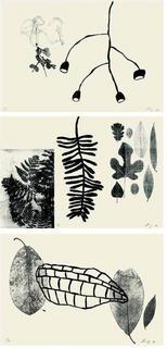 De l'herbier (portfolio of 3 prints) by Shelagh Keeley