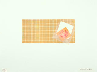 Untitled by Antonia Vila