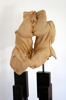 Tongue Between Two Shipwreck by Carlos Marín