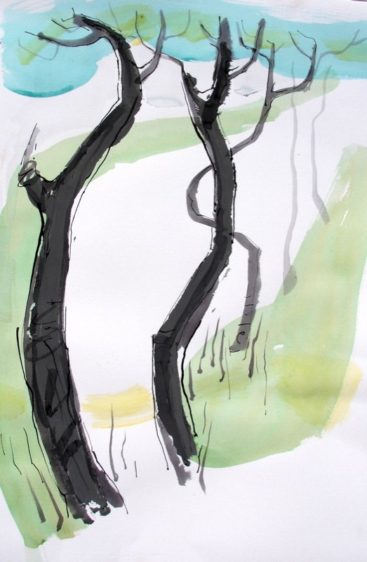 Rome Trees 5 by Alex Mackenzie