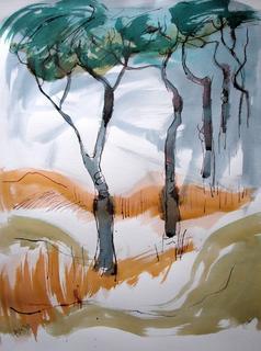 Rome Trees by Alex Mackenzie