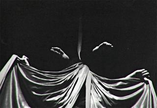 Bat by Fernando Principi