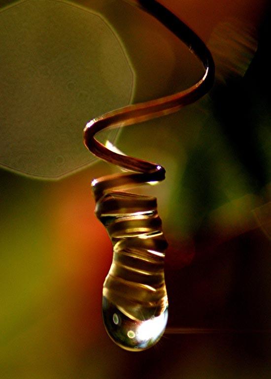 Microkosmos-Art Series: Y la luz se hizo by Verónica Heusch