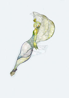 Nautilus by Susan Williams