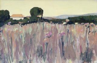 Artichoke Field by María Mora Ramirez