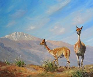 Allá en lo alto by Nacho Quiroga